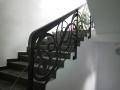 scari-fier-forjat-iunie-2014-30