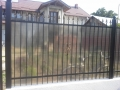 gard fier forjat - ianuarie 2016 -06