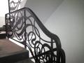 scari-fier-forjat-iunie-2014-24
